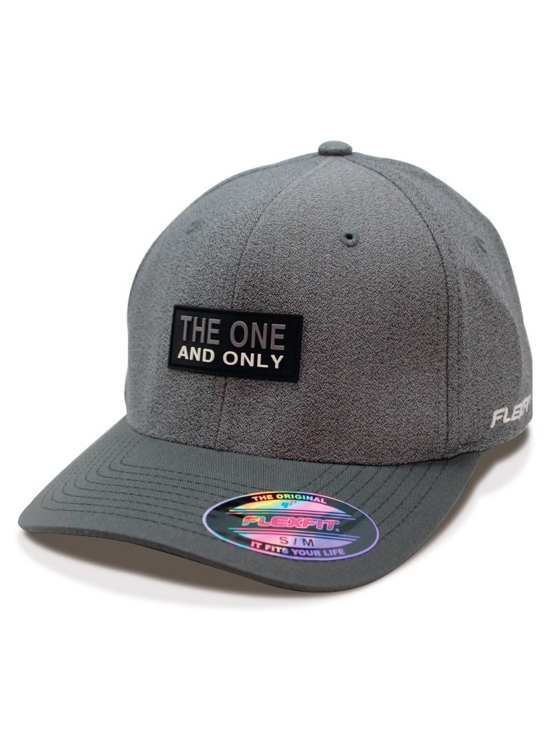 Gorra FLEXFIT The One and Only gris