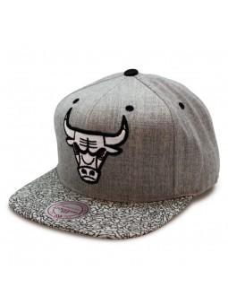 Gorra Chicago Bulls Elephant Mitchell & Ness Cap