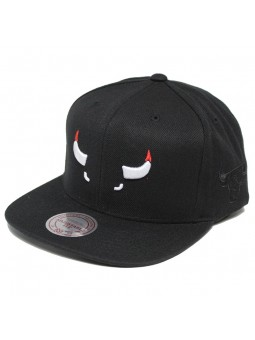 Mitchell & Ness Elements Bulls Cap