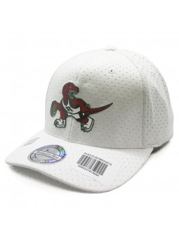 Toronto RAPTORS NBA White 309 Mitchell & Ness Cap