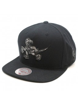 Toronto Raptors NBA Motion Mitchell & Ness Cap