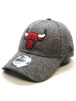 Chicago Bulls NBA Shadow New Era 9forty Cap
