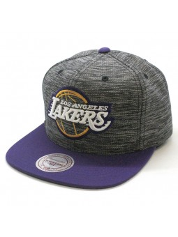 Gorra Los Angeles Lakers NBA Intl 006 Mitchell and Ness gris lila